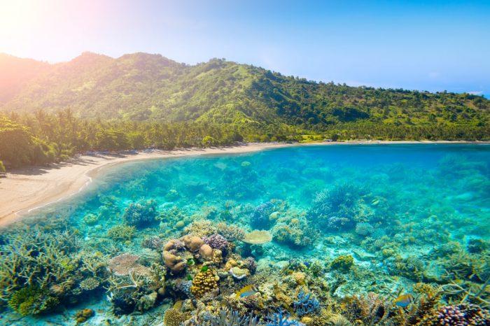 Lombok Gili Pink Beach 4D3N